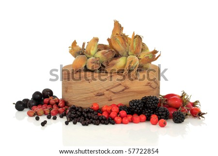 Wild food of autumn of rose hip, elderberry, hawthorn, blackberry, rowan and sloe berry, with  hazelnuts in an olive wood bowl, isolated over white background. - stock photo