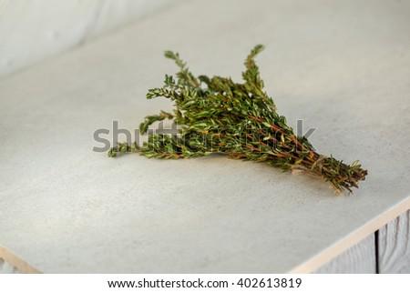 Wild fresh Thyme Herb on white background. - stock photo