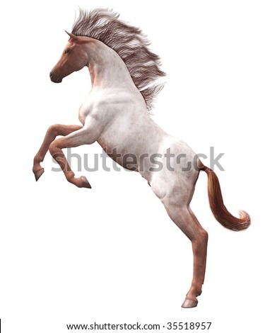 Wild Horse Rearing, Strawberry Roan, Illustration on clean white background - stock photo