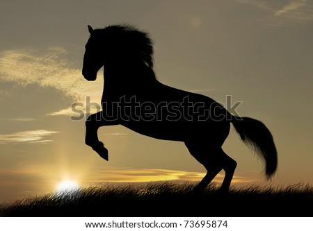 wild horse silhouette - stock photo