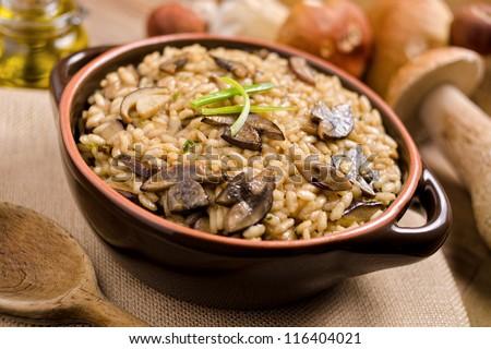 Wild Mushroom Risotto - stock photo