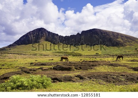 Wild nature at easter island - stock photo