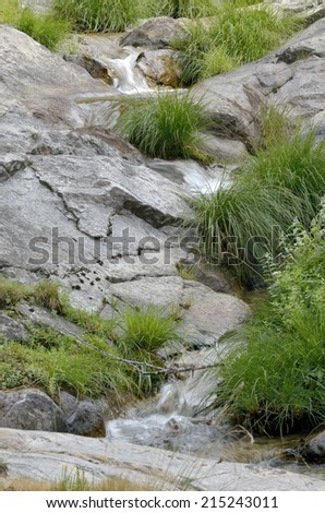 Wild nature. Succession of small waterfalls over granite rocks, at forest.