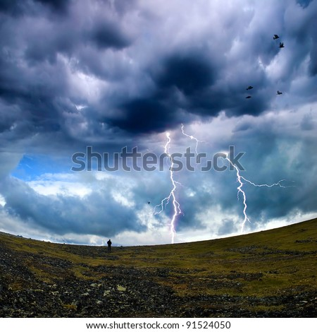 wild nature with storm clouds and birds