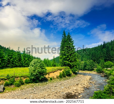 wild river flowing between green mountain forests on a clear summer morning - stock photo