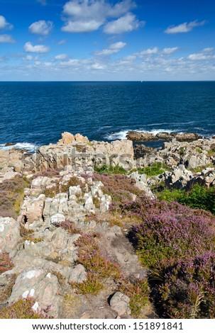 Wild rocky coast in vertical landscape - stock photo