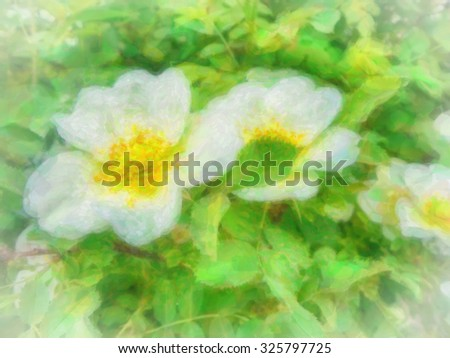wild roses bloom watercolor painting - stock photo