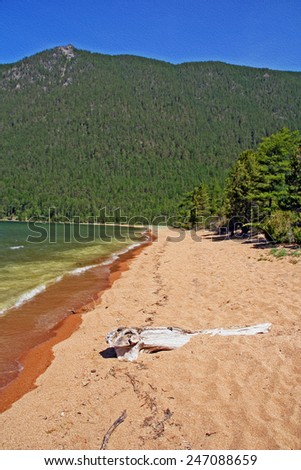 wild shores of Lake Baikal in Russian Siberia - sandy beach and forest in background, vertical, ,  stylized and filtered to resemble an oil painting - stock photo