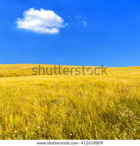 Wild Steppe with dry grass against a clear blue sky on a hot summer day - stock photo