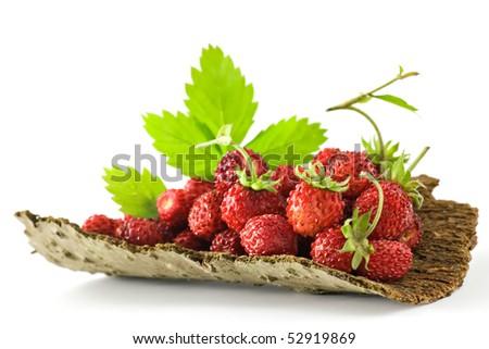 Wild Strawberries on bark - stock photo