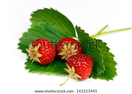 Wild Strawberries on white Background. - stock photo