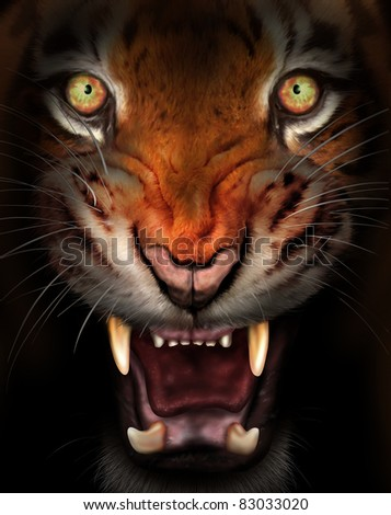 Wild tiger emerging from the dark shadows - stock photo