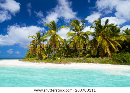 Wild tropical beach with palm trees near Punta Cana - stock photo