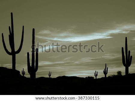 Wild West Desert of Arizona with Cactus - stock photo