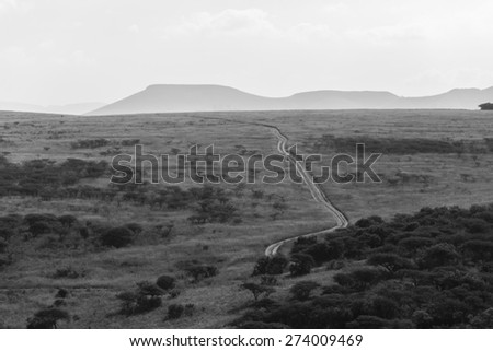 Wilderness Dirt Road Black White Wilderness dirt road through grassland wildlife landscape in black and white vintage tone - stock photo