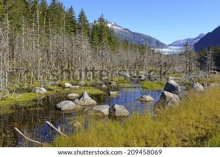 Wilderness Landscape in Alaska, USA - stock photo