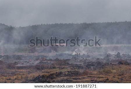 wildfire and smoke - stock photo