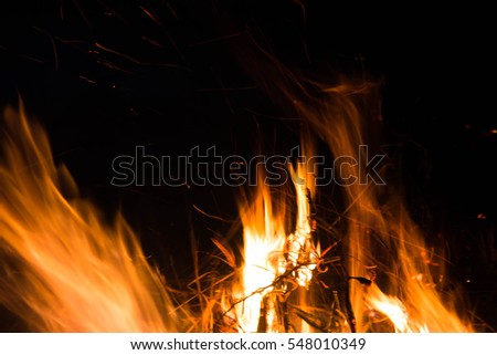 Wildfire,Arson or nature disaster,Forest fire,Fire flames