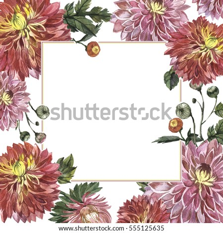 Wildflower aster flower frame in a watercolor style isolated. Full name of the plant: Aster Duchess Mixed. Aquarelle wild flower for background, texture, wrapper pattern, frame or border.