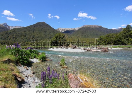 Wildflowers and stream in the mountains - stock photo