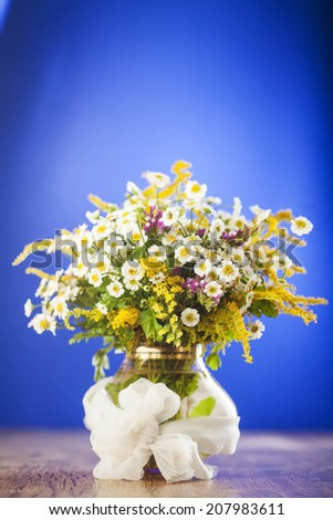 Wildflowers bouquet in glass vase on blue background