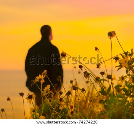 Wildflowers by the shore, against the sunset and a lone man in the distance - stock photo