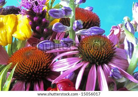 wildflowers in arrangement - stock photo