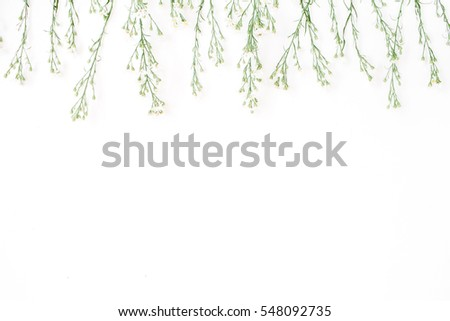 Blog header stock images royalty free images vectors shutterstock wildflowers on white background flat lay top view blog hero or header pronofoot35fo Images