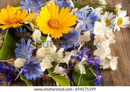 Wildflowers. Studio photography. Camomile, jasmine, cornflower, Doronicum, on the blackboard