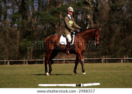 William Fox Pitt doing a dressage test - stock photo