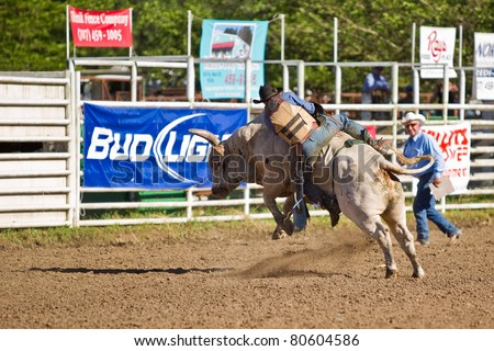 WILLITS, CA - JULY 4: Another rodeo bareback bull rider trying to stay on a twisting bull at the Willits Frontier Days, California's oldest continuous rodeo, held July 4, 2011 in Willits, CA.