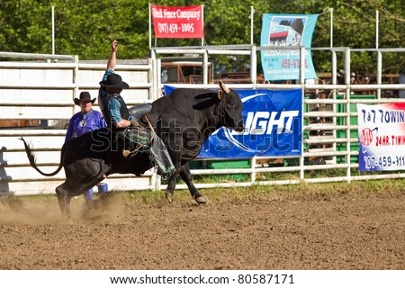WILLITS, CA - JULY 4: Another rodeo bull rider makes unsuccessful ride at the Willits Frontier Days, California's oldest continuous rodeo, held July 4, 2011 in Willits, CA. - stock photo