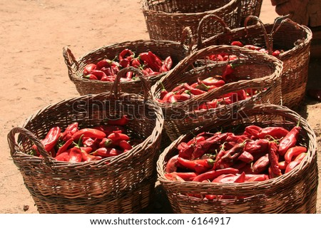 """Willow baskets filled with a harvest of red chile (with an """"e"""") peppers (Capsicum annuum) harvested from a 400 year old ranch which is now a living history museum. - stock photo"""