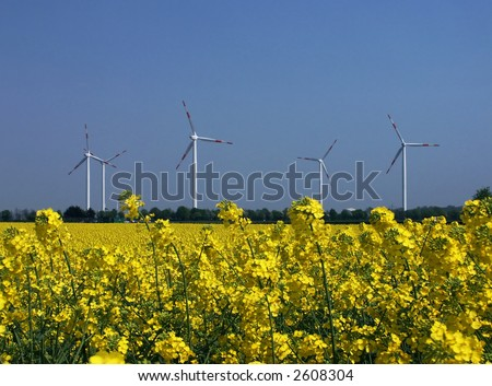 Wind and rapeseed, regenerative energy sources