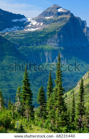 Wind blown trees and alpine plants line the mountains along the Highline Trail.  Glacier National Park, Montana - stock photo