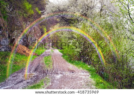 Wind carries the petals of cherry, plum, cherry, plum - covering the white dirt road along the rocky shore. The aroma in the air on a background Bright picturesque rainbow after the rain reminds gates - stock photo