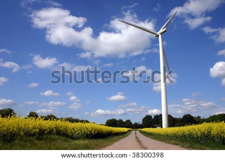 Wind engine inside a rapeseed field with empty road - stock photo