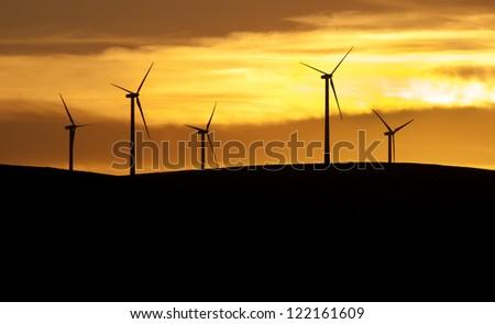 Wind farm at sunset.Eolic park - stock photo