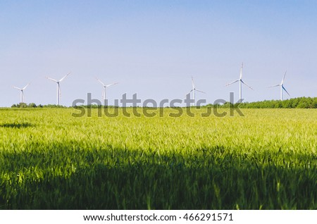 Wind Farm in Farm Wheat Field under Clear Blue Sky