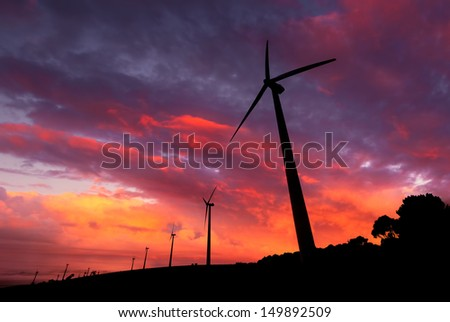 Wind  Farm in South Australia - stock photo