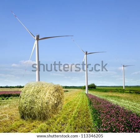 Wind farms on the field