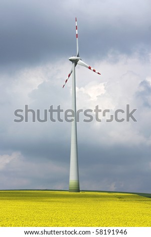 wind mill in the midle of yellow agriculture field - stock photo
