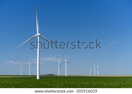 Wind mills in a corn field - stock photo
