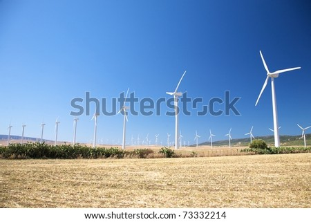wind power mills at Cadiz Andalusia in Spain