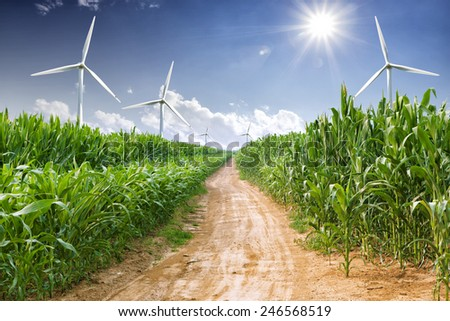 wind power plant and corn field  - stock photo