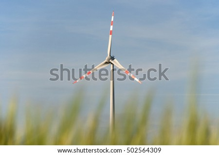 wind power station in a cornfield in lower austria