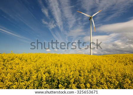 Wind power station in field with rape oil seed plants, Poland - stock photo