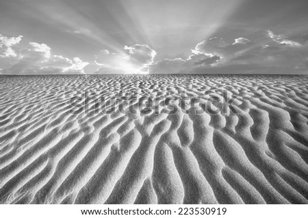Wind swept sand creating ridges on a Death Valley sand dune in California. - stock photo