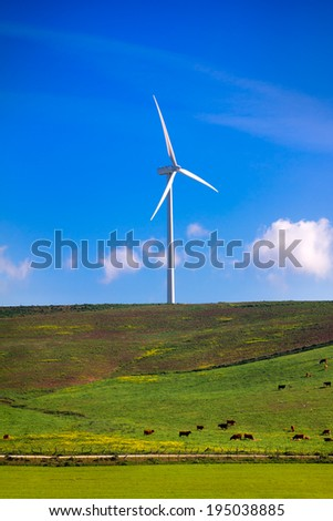 Wind turbine in middle of grassland with cows. Spain ecologist - stock photo