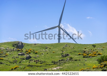 Wind turbines against the blue sky and green fields in the Sicily countryside